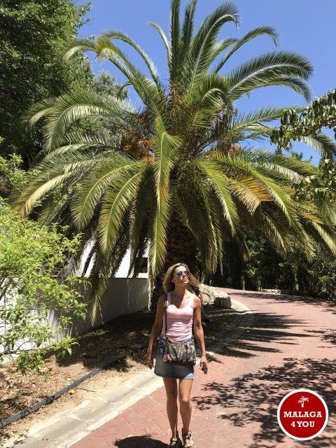 jardín botánico wandelpad
