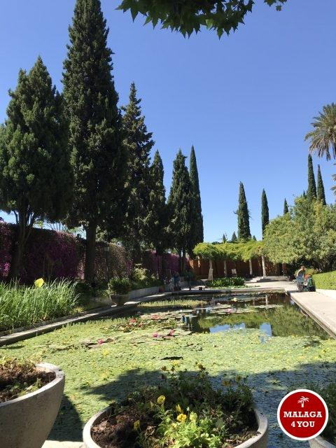 jardín botánico vijver