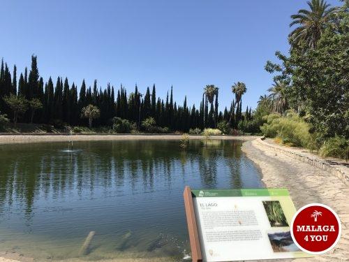 jardín botánico meer