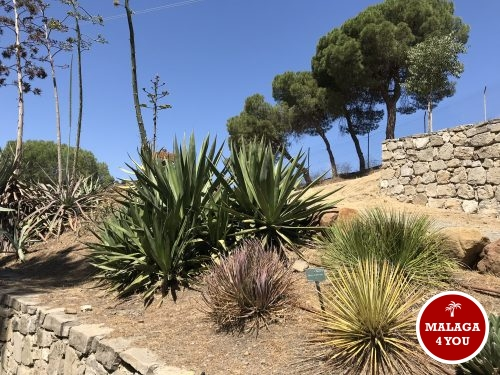 jardín botánico planten