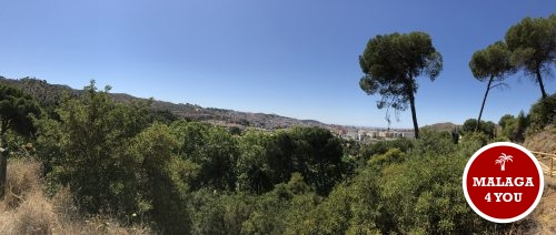 jardín botánico viewpoint