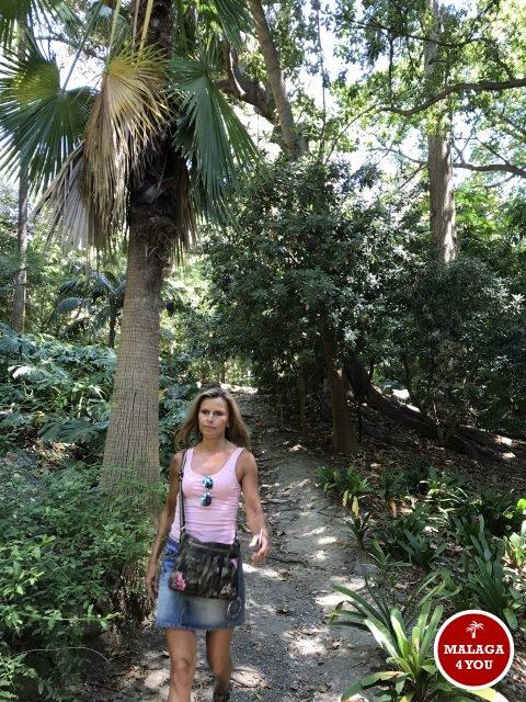 jardín botánico exotic