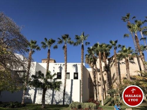 top 10 Malaga picasso museum