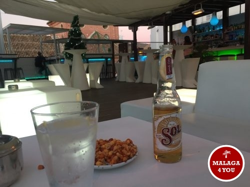 oasis hostal rooftop drink