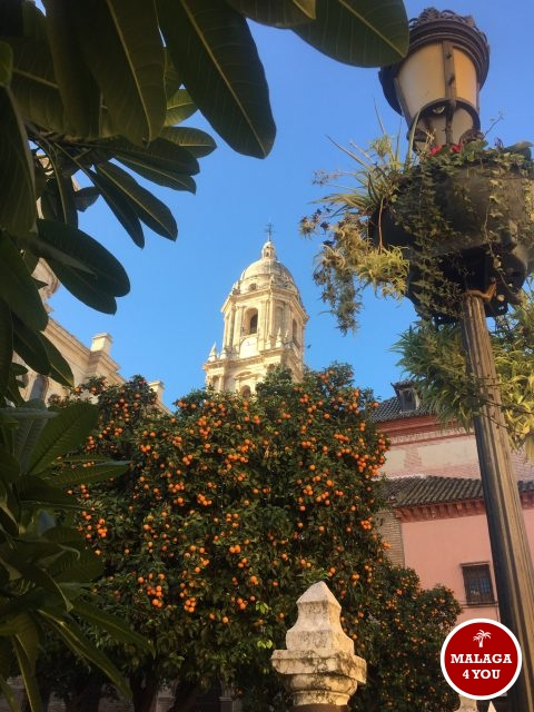 kathedraal la manquita malaga naranja