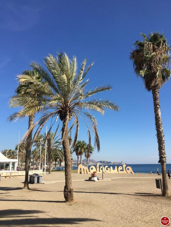 1 dag in Malaga - playa de la malagueta