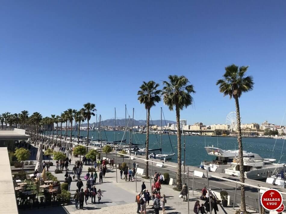 1 dag in Malaga - muelle uno