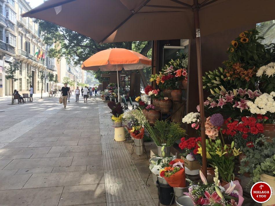 Alameda Principal flowers