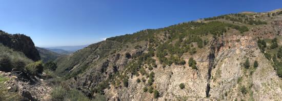 el saltillo view