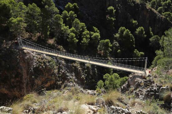 el saltillo puente colgante diep
